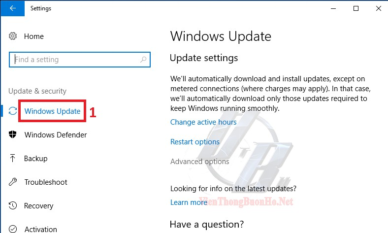 Chọn Advance options trong tùy chọn Windows Update